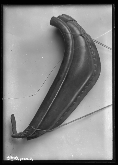 Rhizopertha dominica (injury to horse collar by boring through leather, enlarged). Collar from Belknap Hardware Company, Louisville. Oct-25
