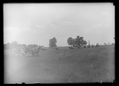 Stripping Bluegrass--Weil's Farm 6/13/1919