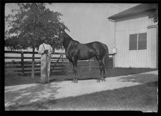 Will Harbut with Man O' War (horse)