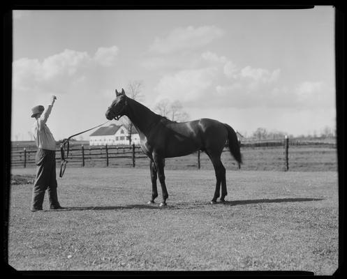 Joe Matherson and Carroll Day, with horse (Twenty Grand) at Whitney Farm
