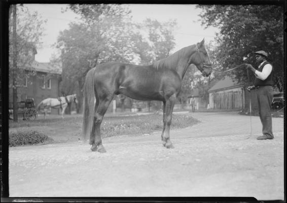 Jones, Mr.; at fairgrounds with horse