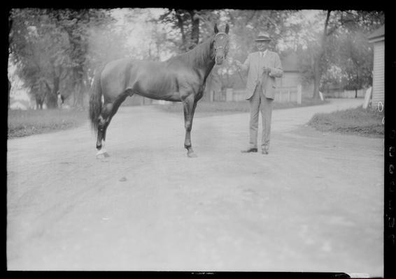 W.R. Reynolds and horse; Dick Reynolds