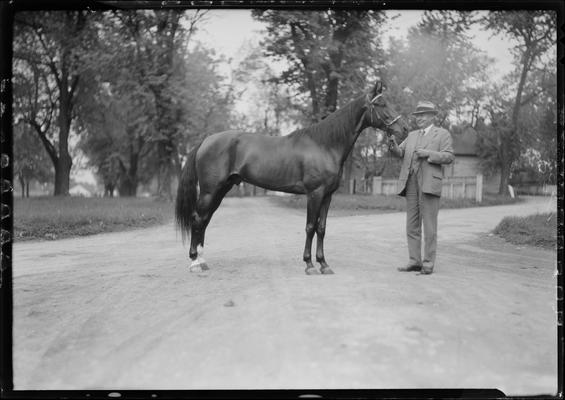 Reynolds, W.R. and horse; Dick Reynolds