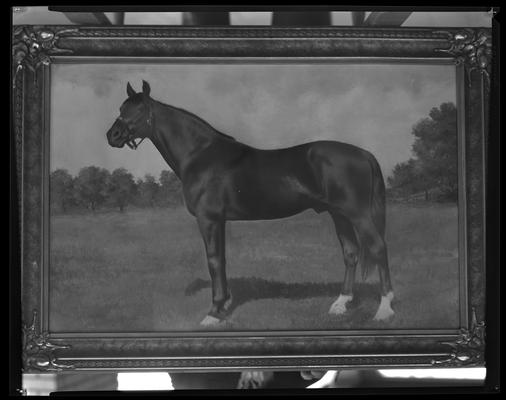 Calumet Farm; framed painting of horse
