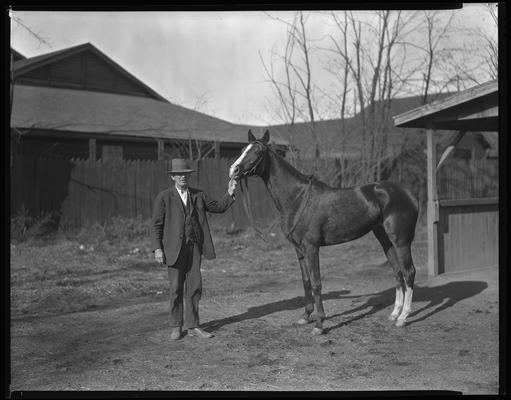 Leslie J. Combs; horse
