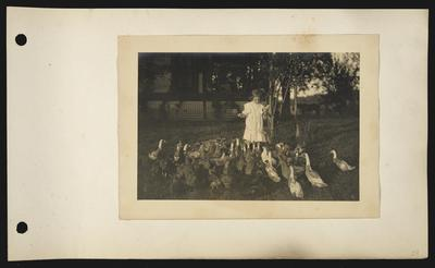 Young girl wearing white dress with embroidery holding a corn cob and feeding couple dozen ducks, porch with white lattice underneath, horse in background