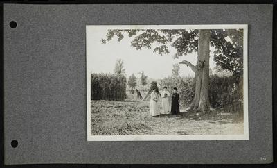 Three women standing under a large tree in hemp field, two wearing white, one wearing black, woman in middle holding a camera