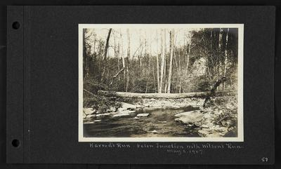 River with log lain across it, notation                          Harrod's Run below Junction with Wilson's Run. May 2, 1907
