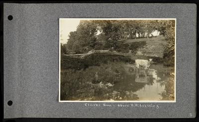 Small river, light colored cow standing in river, stone fencing in background, log across river, notation                          Clarks Run - above R.R. crossing