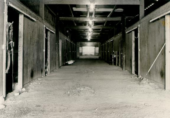 Horse Farms and Owners; Unidentified; Inside of a horse barn