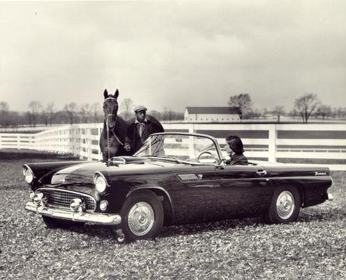 Horse Industry; Unidentified; Ford Thunderbird on a horse farm
