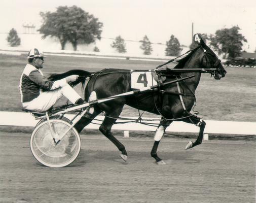 Horses; Buck Passer; Elizabeth; Cupid's Arrow running a race in 1969