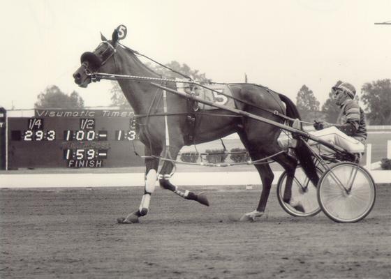 Horses; Buck Passer; Elizabeth; Decorum running in a race in 1972