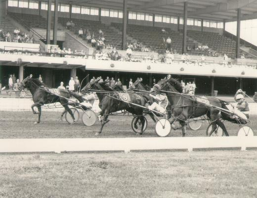 Horses; Great Redeemer; Judger; Jambo Chaney running a race in 1973