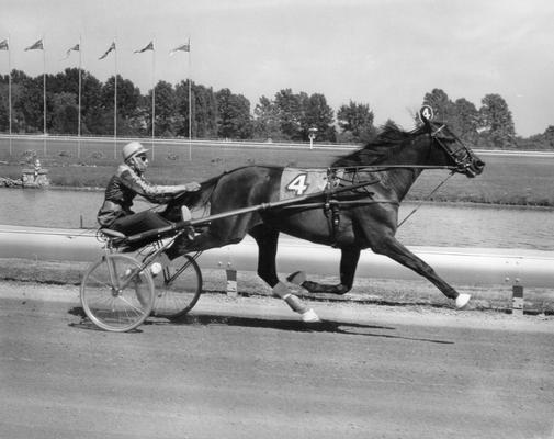 Horses; Nashua; Nevele Pride; Nevele Pride racing in 1967