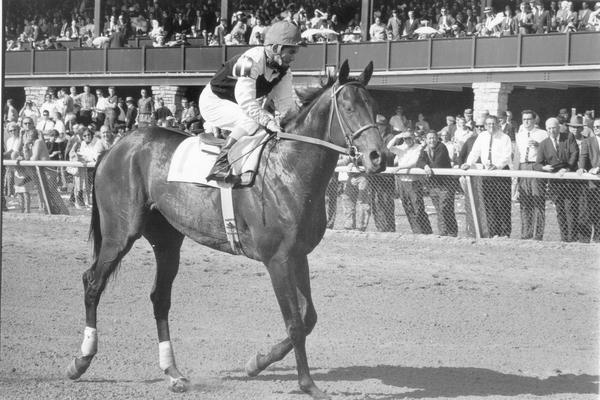 Horses; Niatross; Right Time; Northern Dancer and jockey at Keeneland, 1964