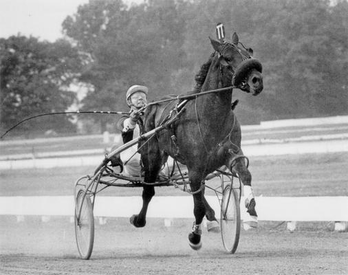 Horses; Riley; Speed Supreme; Skoal running a trial in 1969