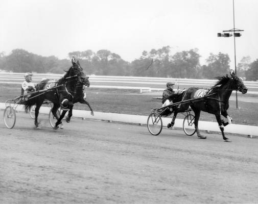 Horses; Riley; Speed Supreme; Speed Model racing in 1967