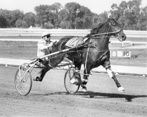 Horses; Speedy Crown; Tulyar; Sunnie Tar coming in at 1:57 in 1968