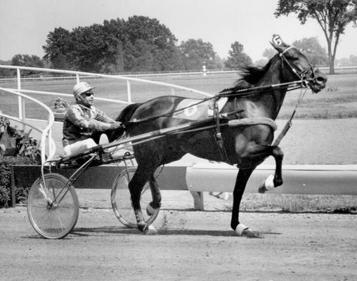Horses; Speedy Crown; Tulyar; Super Bowl and driver in 1972