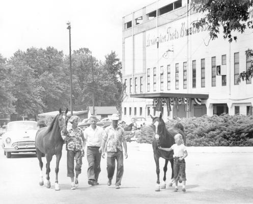 Horses; Harness Racing; Lexington Trots Breeders Association; 1953 Lexington Trots horse show