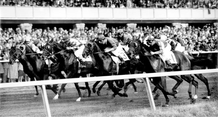 Horses; Thoroughbred Racing; Race Scenes; Thoroughbred horses racing around the track; Grand stands in the back ground