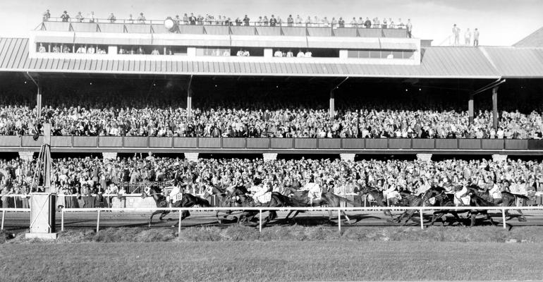 Horses; Thoroughbred Racing; Race Scenes; Thoroughbred horses racing; Grand stands in the back ground