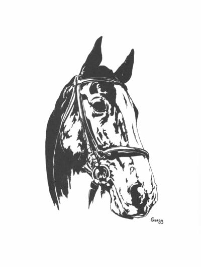 Horse; Related items and photos of a bed; Drawing of a horse
