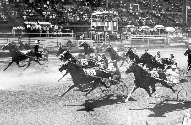 Horses; Harness Racing; Race Scenes; Horses in front of grand stand