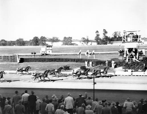 Horses; Harness Racing; Race Scenes; A race as viewed from Grand Stand