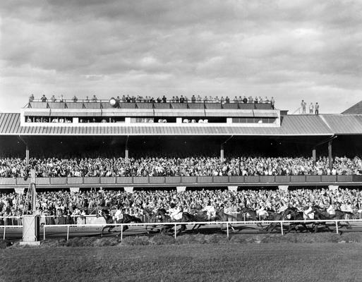 Horses; Thoroughbred Racing; Race Scenes; The horses run past the grand stand