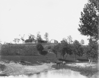 Scene of a brook below a house; a man is riding in a horse-drawn wagon in the middle of a creek. Silver Print