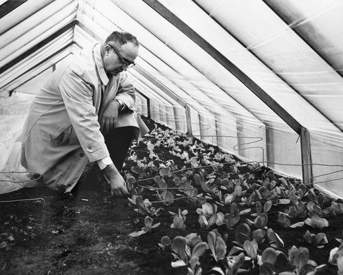 Emmert, Emery Myers, born 1900, died 1962, Professor of Horticulture 1928-1962, pictured in greenhouse