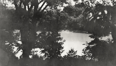 An image of group of unidentified persons swimming in some body of water. This print was found pasted to the front of page 117 of