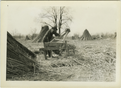Unknown African American male (same man pictured in item 58) breaking hemp on hand brakes in a field of hemp stalk stacks