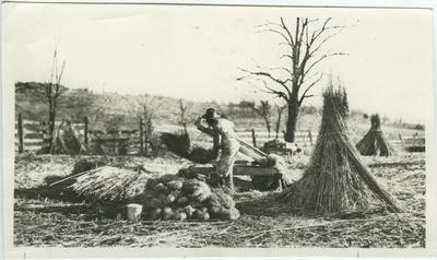 Unknown African American male breaking hemp on hand brakes in a field of hemp stalk stacks