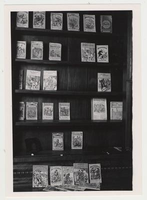 Books, on a bookshelf, that are part of the fiction collection in special Collections