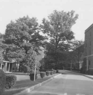Keeneland Hall (right) and Blazer Hall (left) in May of 1969, after three houses were removed to build the two dormitories