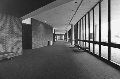 Inside photo of the newly finished Singletary Center