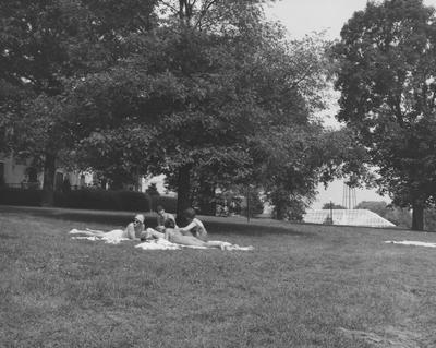 Four people under a tree in the lawn of Spindletop Hall