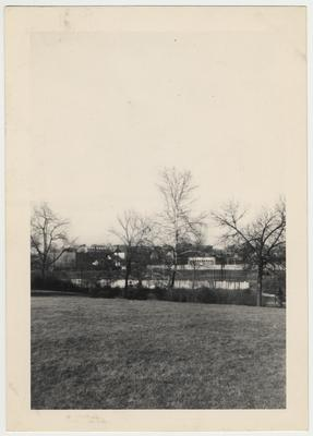 View of campus through the trees