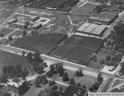 Aerial view from the President's office showing two buildings which have been used by the College of Education - Frazer Hall and William S. Taylor Building; Lexington Herald - Leader staff photo