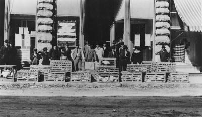 People standing alongside crates of chickens on a roadside