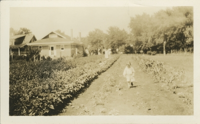 field behind house, small child