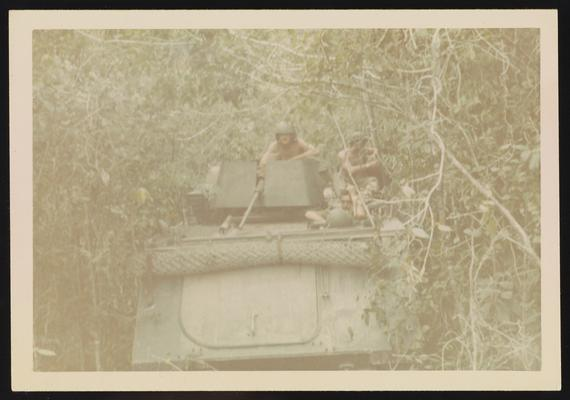 21 in jungle - tanks in jungle