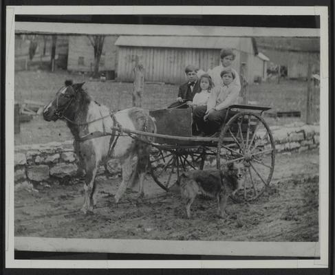 Neill C. Johnson 1900-1966, Mary E. Johnson (Johnston) 1909-1979, Charles D. Johnson 1903-1920, Lyman T. Johnson with pony, James, in 2-wheel cart on road in front of barn on rainy day