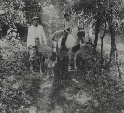 John Jacob Niles schooling a pony foal, John Ed Niles mounted on a pony (right); Boot Hill Farm; Van Coke