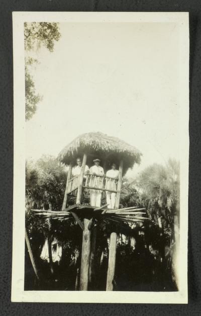 Three unidentified black men in a tree-house
