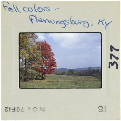 Fall colors - Flemingsburg, Kentucky