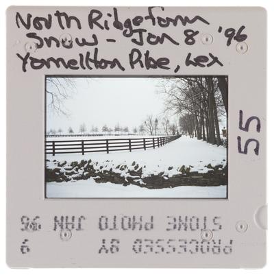 North Ridge Farm Snow - Yarnallton Pike, Lexington